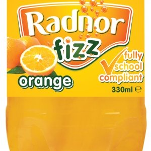 45_330ml_fizz_orange-lr